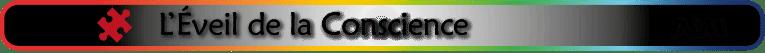 sous-titre PSM_développement personnel éveil de conscience
