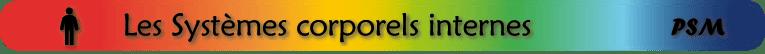 sous-titre PSM_domaine physique