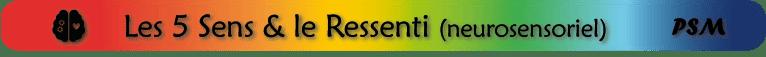 sous-titre PSM_domaine sensoriel